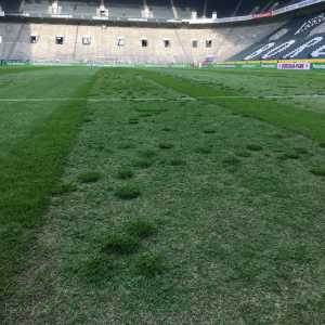 Pitch condition for Borussia Mönchengladbach-Dortmund match that sparked discussion of abandoning game