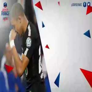 The 2017-18 Coupe de France Final will be Les Herbiers(3rd division side) vs Paris Saint - Germain