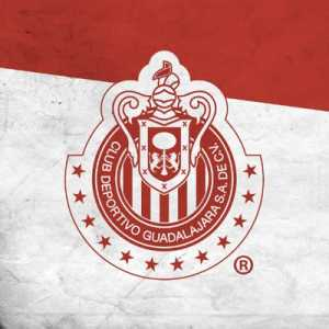Chivas Guadalajara wins the Concacaf Champions League with an all Mexican squad!!! Congrats!