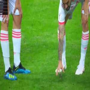 Isco saving a little bird right before match vs Iran