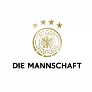 DFB apology to swedish coaching staff