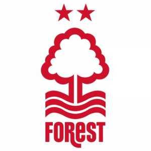 Gil Bastiao Dias joins Nottingham Forest on a season-long loan from Monaco.