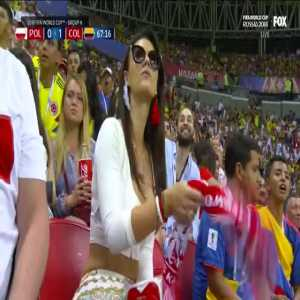 Polish Fan