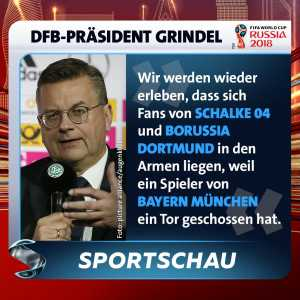 """German FA president Reinhard Grindel before the World Cup: """"Once again, we will see fans of Borussia Dortmund and Schalke lieing in each others arms (celebrating) because a player of Bayern Munich has scored."""" None of Bayern Munich's players scored for Germany at this WC."""