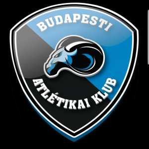 A group of local football enthusiasts have re-formed Budapesti Atlétikai Klub, the club which Ernest Erbstein played for. Their long-term aim is to become the best-run amateur side in Hungary and to establish an annual cup competition in honour of Erbstein.