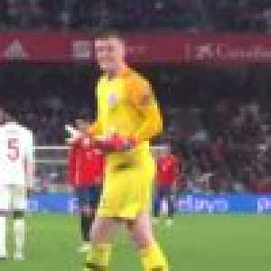 Pickford's reaction to the 7 minutes of stoppage time against Spain