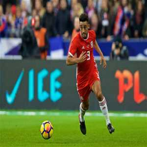 Neil Taylor has withdrawn from the Wales squad through injury.