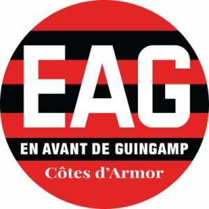 """Guingamp: """"Better to lose 9-0 once than 1-0 9 times. Good evening to all"""""""