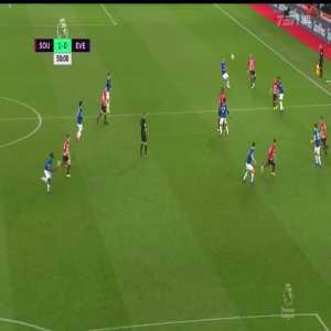 Southampton 1-0 Everton: Ward-Prowse