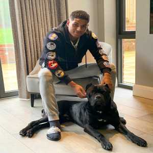 Rashford posts picture of his dog, which as had its ears clipped