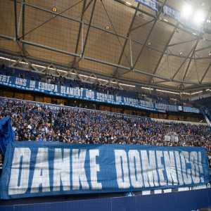 "Schalke fans banner aimed at the players, ""Cost the coach his job, embarrassed us in Europe and never understood Schalke: Remove mercenaries! Danke Domenico!"""