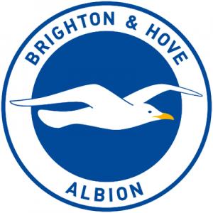 Brighton have sacked Chris Hughton