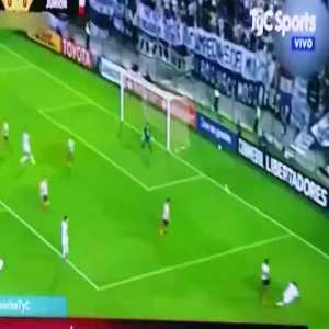 Paraguay fan with the celebration of the year
