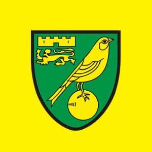 Norwich add 2 more to the injury list