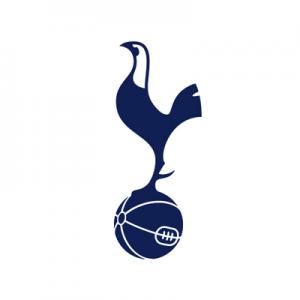 Michel Vorm signs for Tottenham