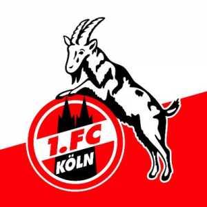 1. FC Köln announces Markus Gisdol as their new coach and Horst Heldt as new sporting director