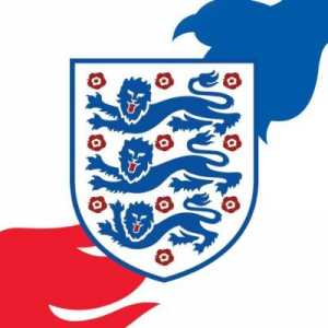 England will host a friendly against Denmark at Wembley on 31st March 2020