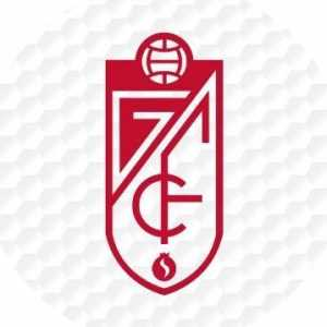 Granada CF sign Antoñin from Malaga CF