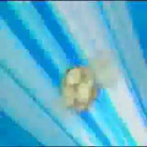 Japan vs Germany great save by Oliver Kahn