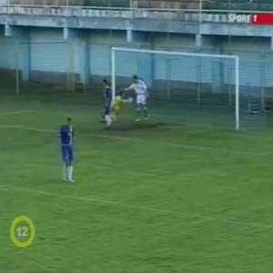 2006 U19 match between Hungary and Croatia: a black cat stops the ball on the croatian goal line