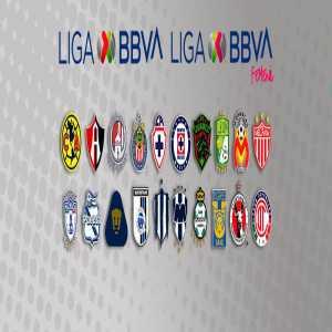 Liga MX is officially canceled