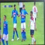 Napoli 1 - 0 Gozzano - Fabian Ruiz (Great Goal)