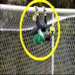Acrobatic Goalkeepers Saves