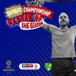 Teemu Pukki is the Championship player of the season.