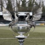 The Welsh Premier League trophy is the coolest trophy in the world.