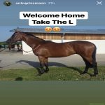 """Grizemann names his new horse """"Take the L."""""""