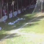 Player in a regional league in Argentina gets a yellow card for stepping on an armadillo that invaded the pitch
