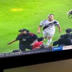 Zlatan says goodbye to the MLS by tugging his pecker in a fan's face