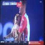 A dog invades a San Luis/Cruz Azul game