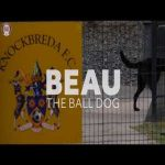Knockbreda FC have a dog as their ball boy